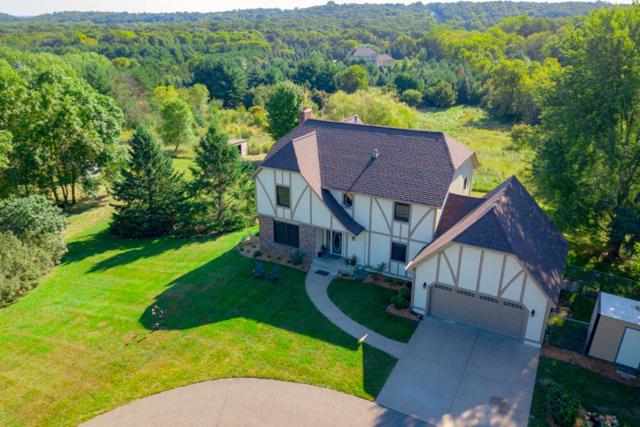 4393 Odell Avenue S, Afton, MN 55001 (#5004411) :: The Snyder Team