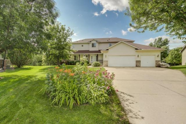 209 Meadow Sweet Place, Watertown, MN 55388 (#5005597) :: The Snyder Team