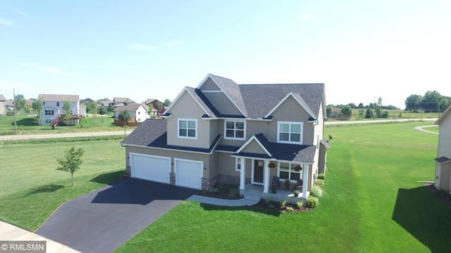 19535 Prairieview Drive S, Rogers, MN 55374 (#5005721) :: House Hunters Minnesota- Keller Williams Classic Realty NW