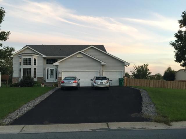 11365 79th Street NE, Otsego, MN 55301 (#5006059) :: House Hunters Minnesota- Keller Williams Classic Realty NW
