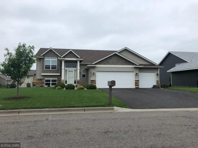 6606 96th Street S, Cottage Grove, MN 55016 (#5006370) :: The Hergenrother Group North Suburban