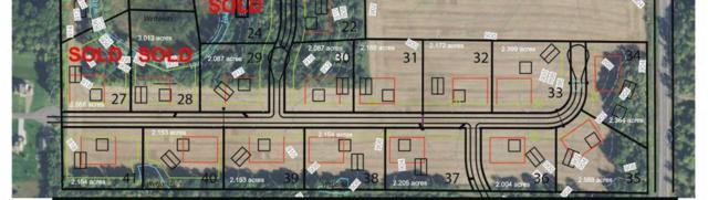 XXX Kiowa Street Nw, Oak Grove, MN 55303 (#5006608) :: The Preferred Home Team