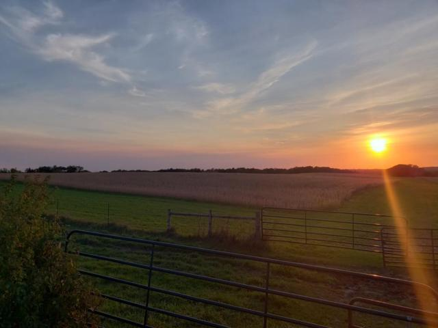 69.5 acres 950th Street, Trimbelle Twp, WI 54011 (#5007014) :: The Snyder Team