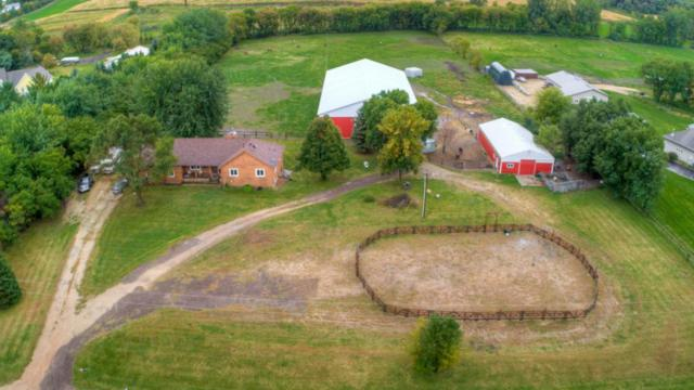 10171 240th Street E, Lakeville, MN 55044 (#5007026) :: The Preferred Home Team