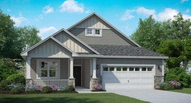 8255 63rd Street S, Cottage Grove, MN 55016 (#5007038) :: Olsen Real Estate Group