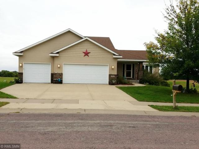 324 Cedar Trail Drive, Le Sueur, MN 56058 (#5007152) :: House Hunters Minnesota- Keller Williams Classic Realty NW