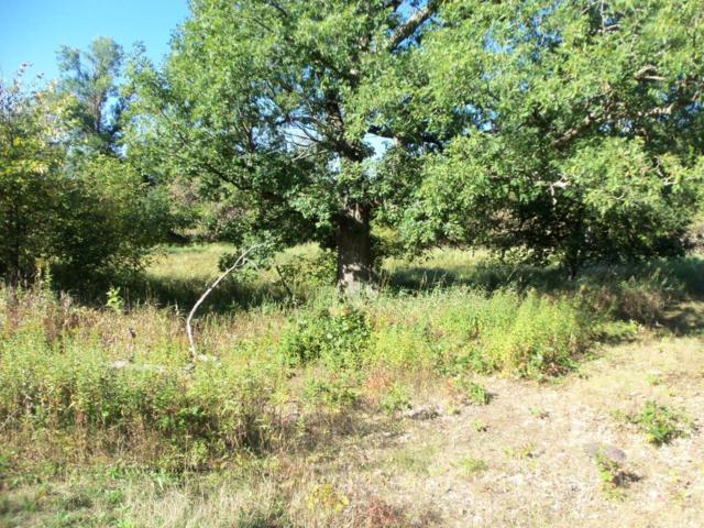 LOT 3 Cty H, Balsam Lake, WI 54810 (#5007573) :: Hergenrother Group