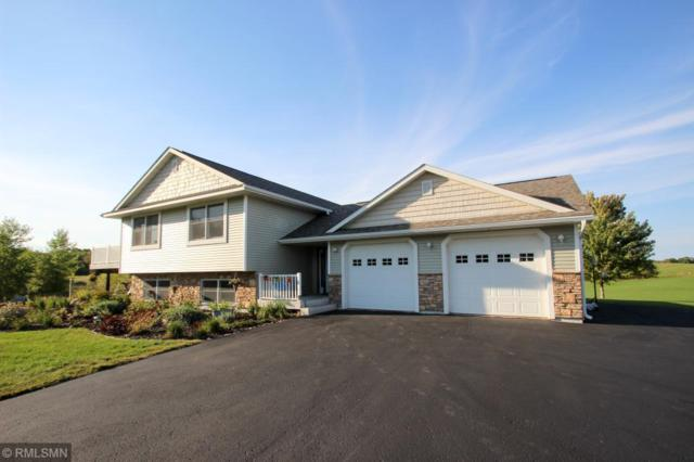1086 220th Avenue, Star Prairie Twp, WI 54017 (#5007585) :: The Snyder Team