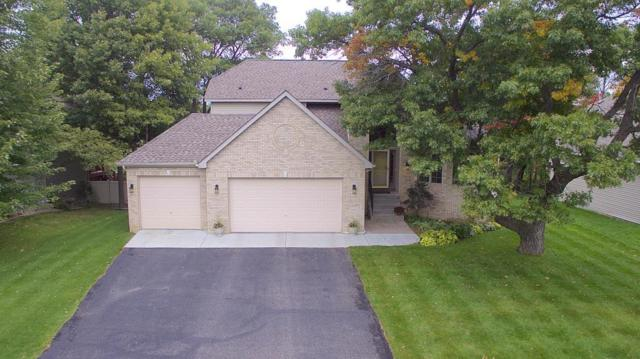 1265 155th Lane NW, Andover, MN 55304 (#5008789) :: The Sarenpa Team
