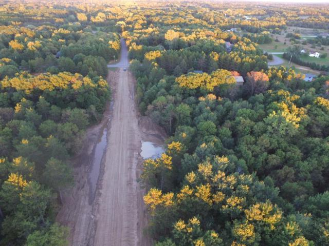 LOT 1 227th, Oak Grove, MN 55005 (#5010558) :: The Sarenpa Team