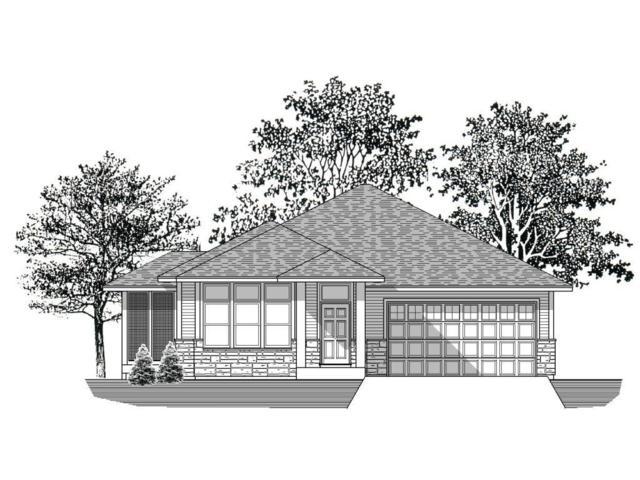 1226 Willowbrook Circle, Delano, MN 55328 (#5011066) :: The MN Team