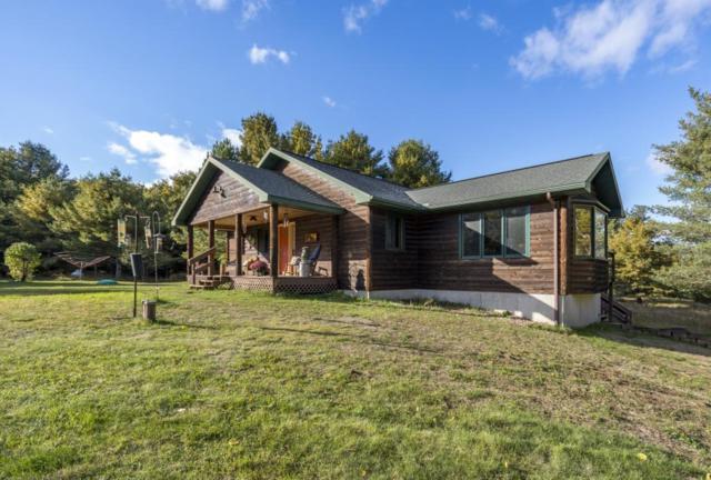 6992 S Hanson Road, Lake Nebagamon, WI 54849 (#5012451) :: Centric Homes Team