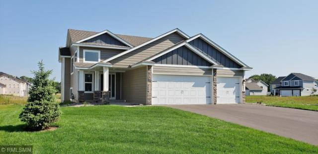 6900 94th Street S, Cottage Grove, MN 55016 (#5013416) :: The MN Team