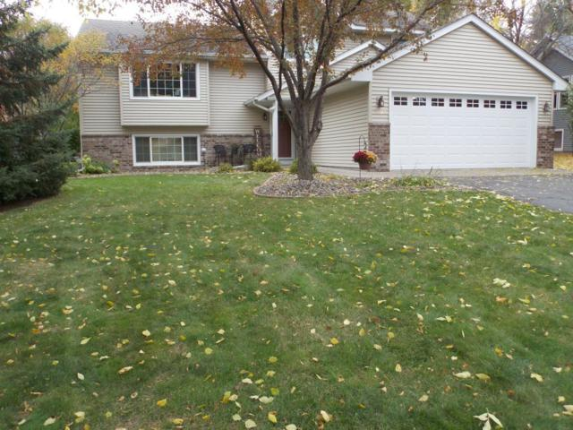 5775 Woodbridge Drive, Savage, MN 55378 (#5014039) :: Centric Homes Team