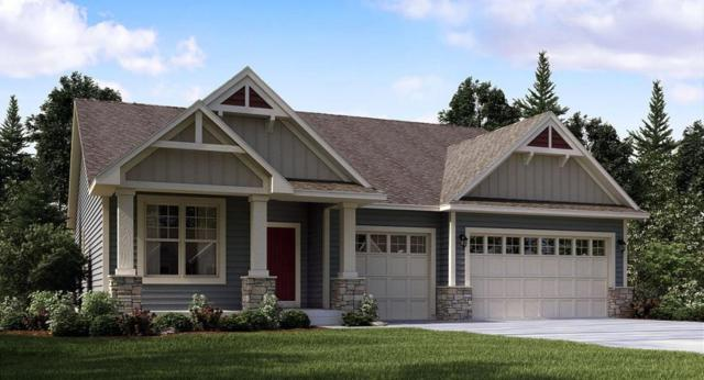 8156 60th St S, Cottage Grove, MN 55016 (#5014118) :: The Snyder Team