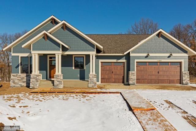 12228 129th St. Ct. S., Hastings, MN 55033 (#5014250) :: The Sarenpa Team