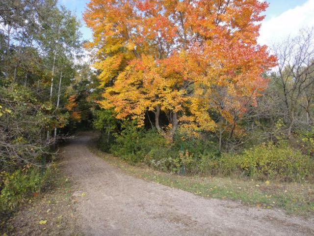 Lot Hwy 12, Fall Creek, WI 54742 (#5014352) :: The Preferred Home Team