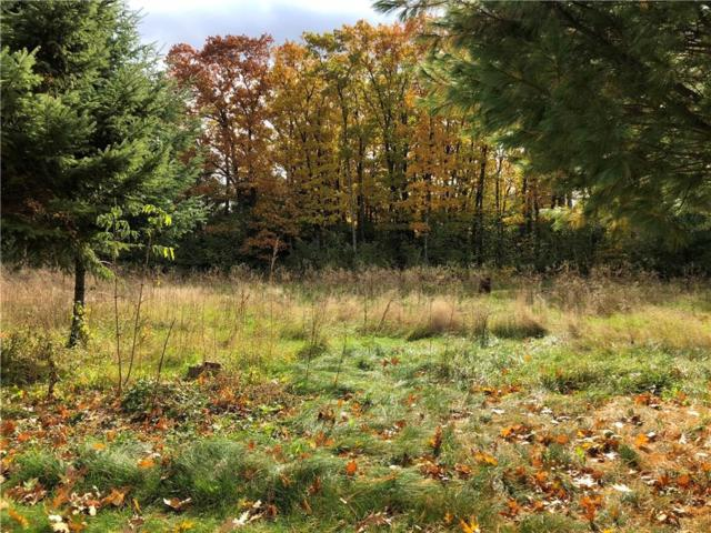 Lot 1st Street S, Sand Lake Twp, WI 54876 (MLS #5016245) :: The Hergenrother Realty Group