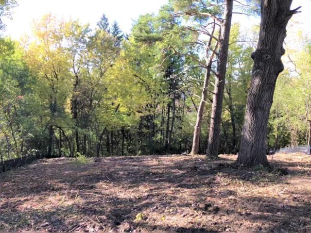 18095 Jaguar Path, Lakeville, MN 55044 (#5016386) :: Centric Homes Team