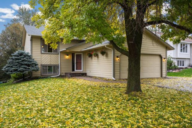16823 Jonquil Trail, Lakeville, MN 55044 (#5016410) :: Centric Homes Team