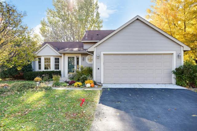8589 Rosewood Lane N, Maple Grove, MN 55369 (#5016656) :: Centric Homes Team