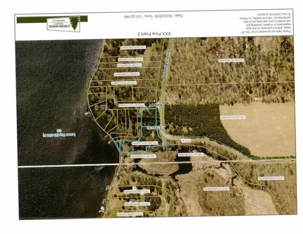 XXX Pine Point, Jenkins Twp, MN 56472 (#5016736) :: Centric Homes Team