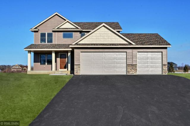 XXXXX Sierra Avenue, Shafer, MN 55074 (#5016901) :: The MN Team
