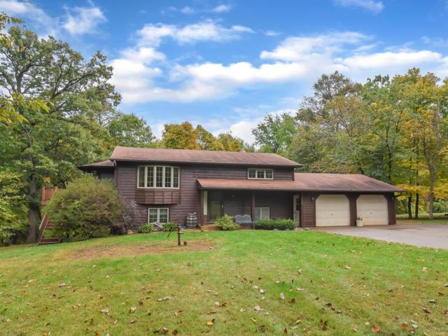2558 Lambert Avenue NE, Saint Michael, MN 55376 (#5018047) :: House Hunters Minnesota- Keller Williams Classic Realty NW