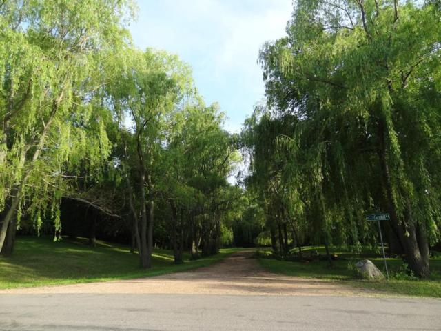 3950 Farmhill Court, Minnetrista, MN 55364 (#5020103) :: The MN Team