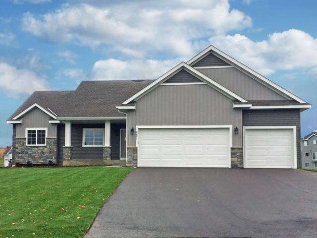 6559 Carrigan Lake Drive, Waverly, MN 55390 (#5020689) :: The Snyder Team