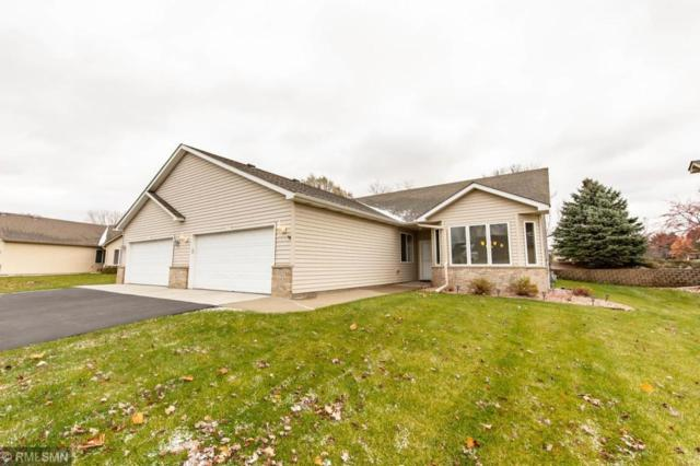15819 Cicerone Path, Rosemount, MN 55068 (#5021822) :: The Preferred Home Team