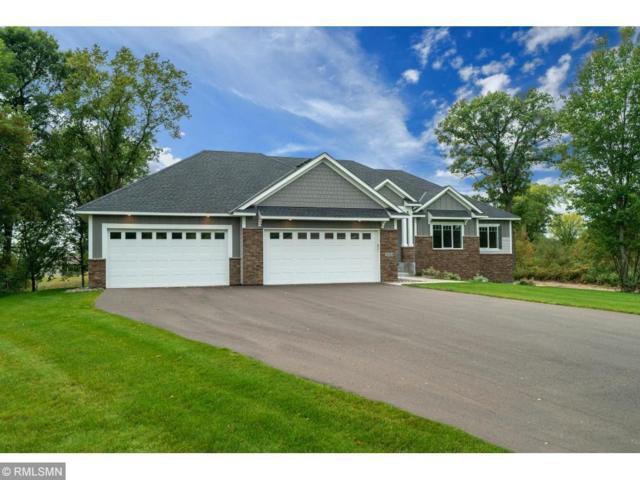 3842 191st Lane NW, Oak Grove, MN 55303 (#5021947) :: Olsen Real Estate Group