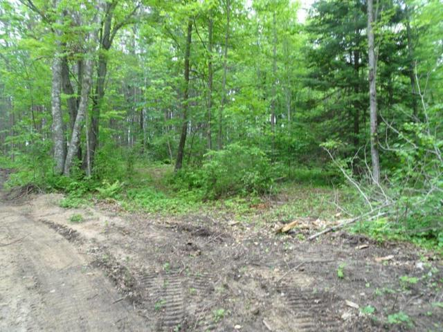 Tract C Echo Pine Trail, Remer, MN 56672 (#5022457) :: The Preferred Home Team