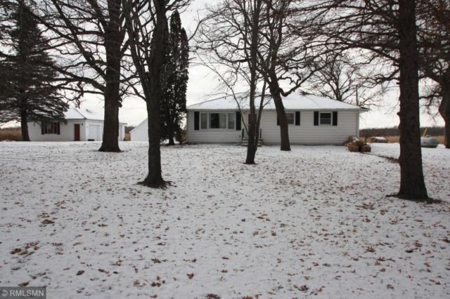 17607 17th Street, Princeton, MN 55371 (#5022749) :: The Preferred Home Team