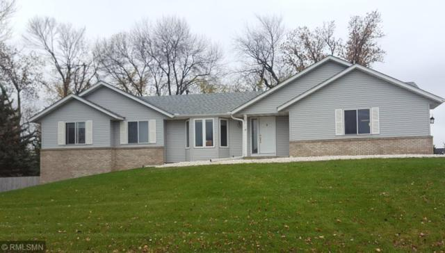 17462 Hazel Court, Lakeville, MN 55044 (#5022781) :: Twin Cities Listed