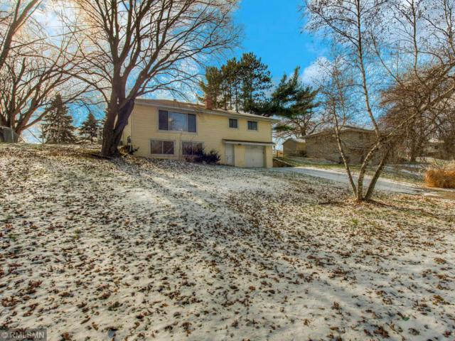 11220 166th Street W, Lakeville, MN 55044 (#5023646) :: The MN Team