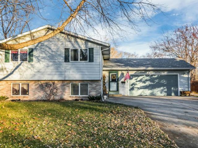 219 S Elm Street, Belle Plaine, MN 56011 (#5023855) :: Centric Homes Team