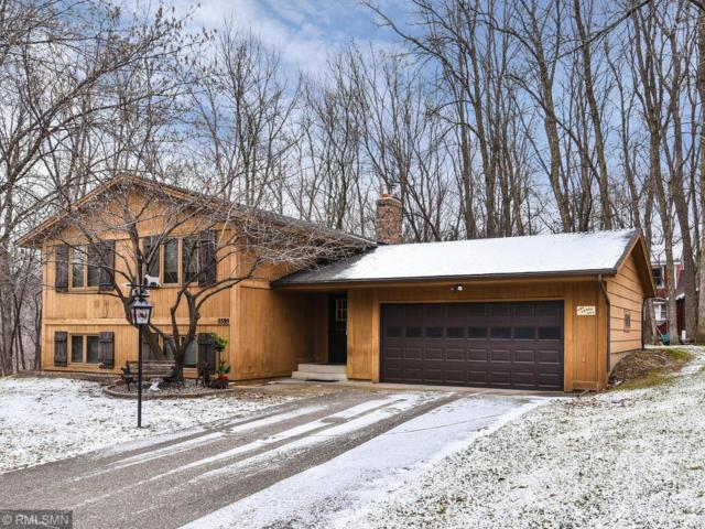 5595 Wedgewood Drive, Shorewood, MN 55331 (#5023868) :: The Sarenpa Team