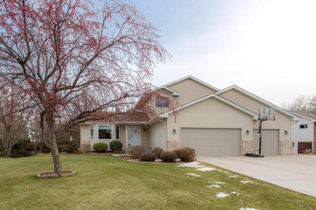 1370 153rd Lane NW, Andover, MN 55304 (#5023931) :: The Sarenpa Team