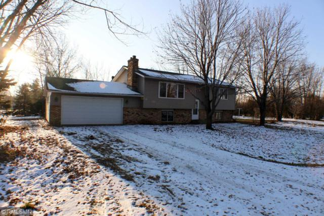 3133 88th Street NE, Monticello Twp, MN 55362 (#5024075) :: The MN Team