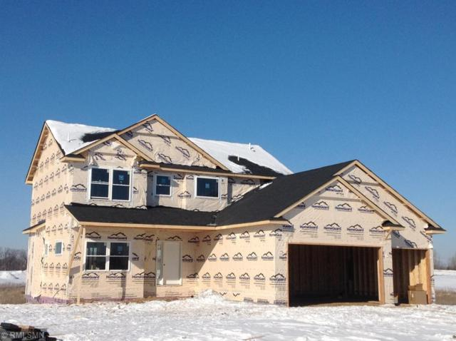 2010 Rosewood Street, Lino Lakes, MN 55038 (#5024889) :: The Odd Couple Team