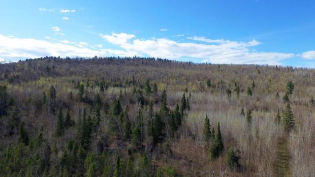 6775 Mountain Home Trail, Silver Bay, MN 55614 (#5025037) :: The Odd Couple Team
