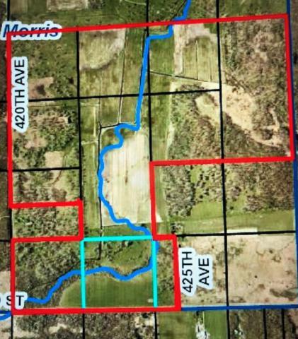 10606 420th Avenue, Mt. Morris Twp, MN 56338 (#5025255) :: The Sarenpa Team