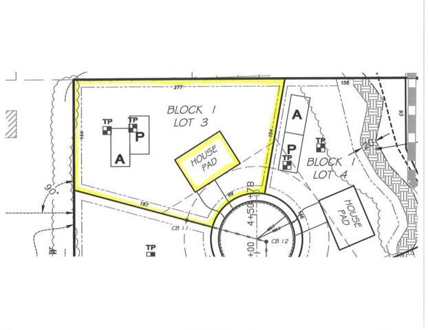 8723 Odell Court NE, Otsego, MN 55330 (#5026277) :: House Hunters Minnesota- Keller Williams Classic Realty NW