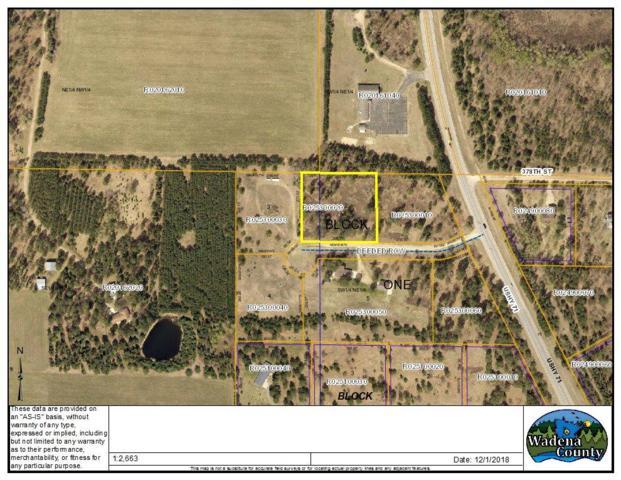 L2 B1 Hunt Drive, Menahga, MN 56464 (#5027530) :: Olsen Real Estate Group