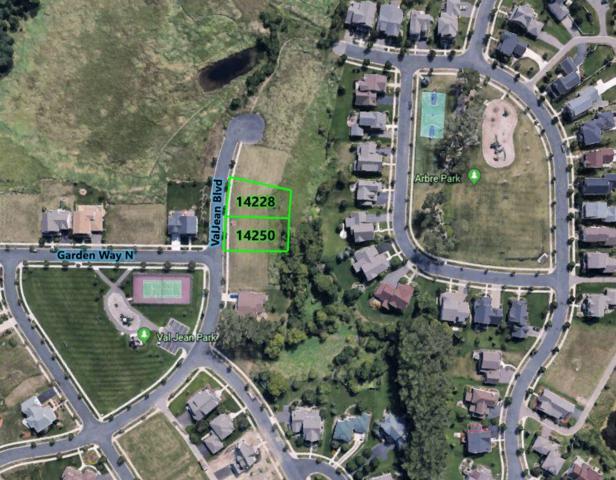 14228 Val Jean Boulevard N, Hugo, MN 55038 (#5027990) :: Olsen Real Estate Group