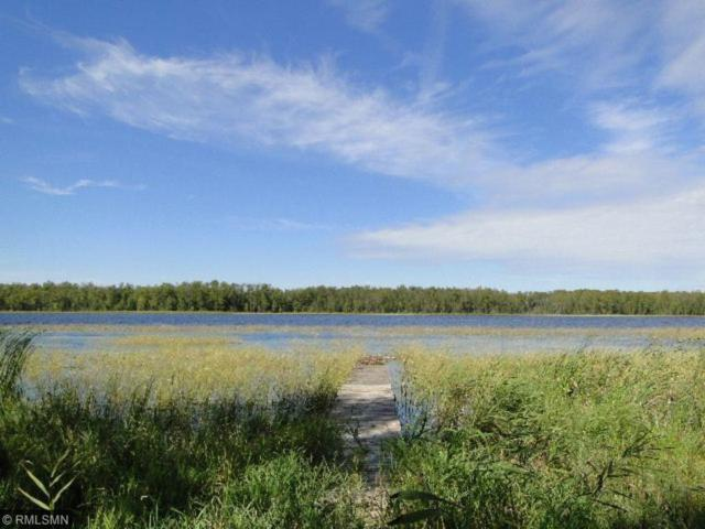 5295 Ingua Trail NE, Remer, MN 56672 (#5028101) :: The MN Team