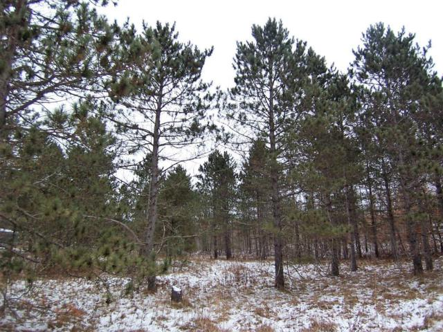 Lot 11 Skylight Road, Webster, WI 54893 (#5028392) :: Olsen Real Estate Group