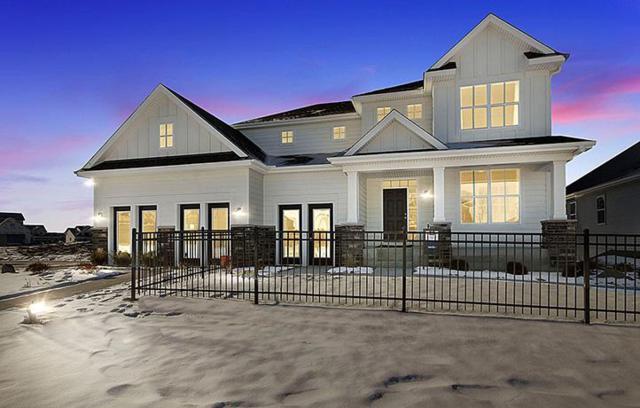 7137 Palisades Avenue NE, Otsego, MN 55330 (#5028894) :: House Hunters Minnesota- Keller Williams Classic Realty NW