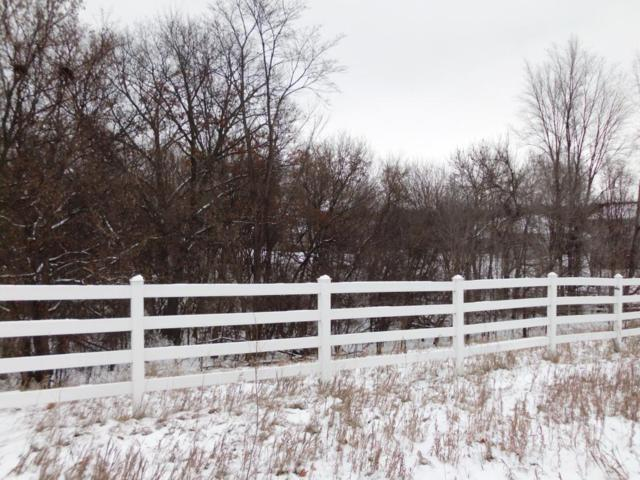 xxx Larabee Avenue, Saint Michael, MN 55376 (#5029095) :: House Hunters Minnesota- Keller Williams Classic Realty NW